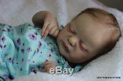 Americus By Laura Lee Eagles Reborn Doll Baby