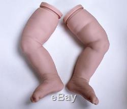 BLAZE, Complete STARTER KIT make a REBORN Baby DOLL, DVD, PAINT, MOHAIR, EYES