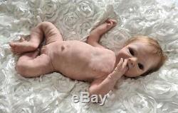 Faye by Lillianna Dares full bodied silicone reborn doll/baby