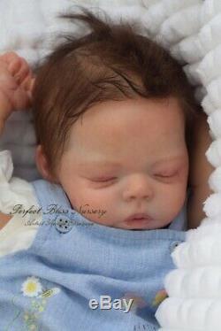 Pbn Yvonne Etheridge Reborn Baby Doll Sculpt Tia By Bonnie Sieben 0220