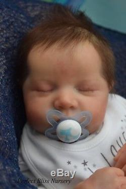 Pbn Yvonne Etheridge Reborn Doll Baby Boy Levi By Bonnie Brown 0119
