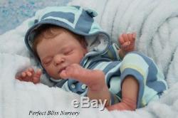 Pbn Yvonne Etheridge Reborn Doll Baby Boy Luxe By Cassie Brace 0518