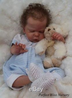 Pbn Yvonne Etheridge Reborn Doll Baby Boy Sculpt Josephine By C. Brace 0118