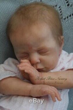 Pbn Yvonne Etheridge Reborn Doll Girl Sculpt Luise By Karola Wegerich 0219