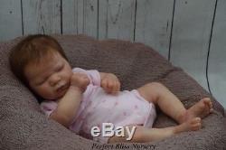 Pbn Yvonne Etheridge Reborn Doll Realborn Lavender By Bountyful Baby 0218