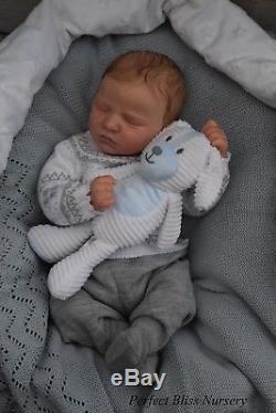 Pbn Yvonne Etheridge Reborn Doll Realborn Quinn Asleep By Bountiful Baby 0218