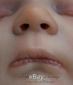 Pbn Yvonne Etheridge Reborn Doll Realborn Sculpt Jennie By Bountiful Baby 0219