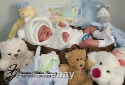 Reborn Baby Boy Gideon By Down Mcleod/mimadolls Artistsnewbornl E. Dollsiiora