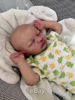 Reborn Baby Evan Partial Silicone Full Limbs 4lbs 17in OOAK Painted Hair