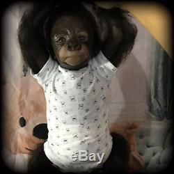 Reborn baby monkey, Animals Reborns, Reborn Dolls